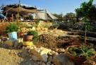 bedouin (4)