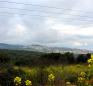 Safed INN - SAFED GENERAL VIEW (Large)