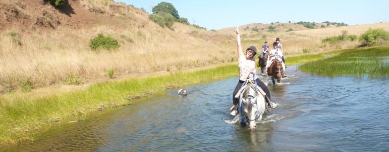 aaHorseback Riding